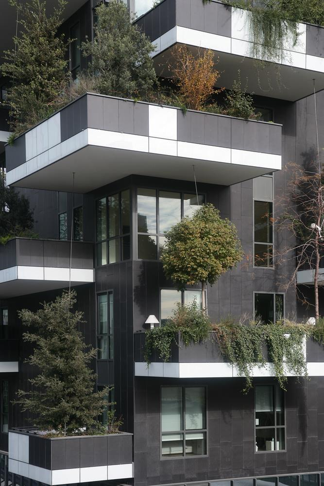 Bosco verticale: Photo 13