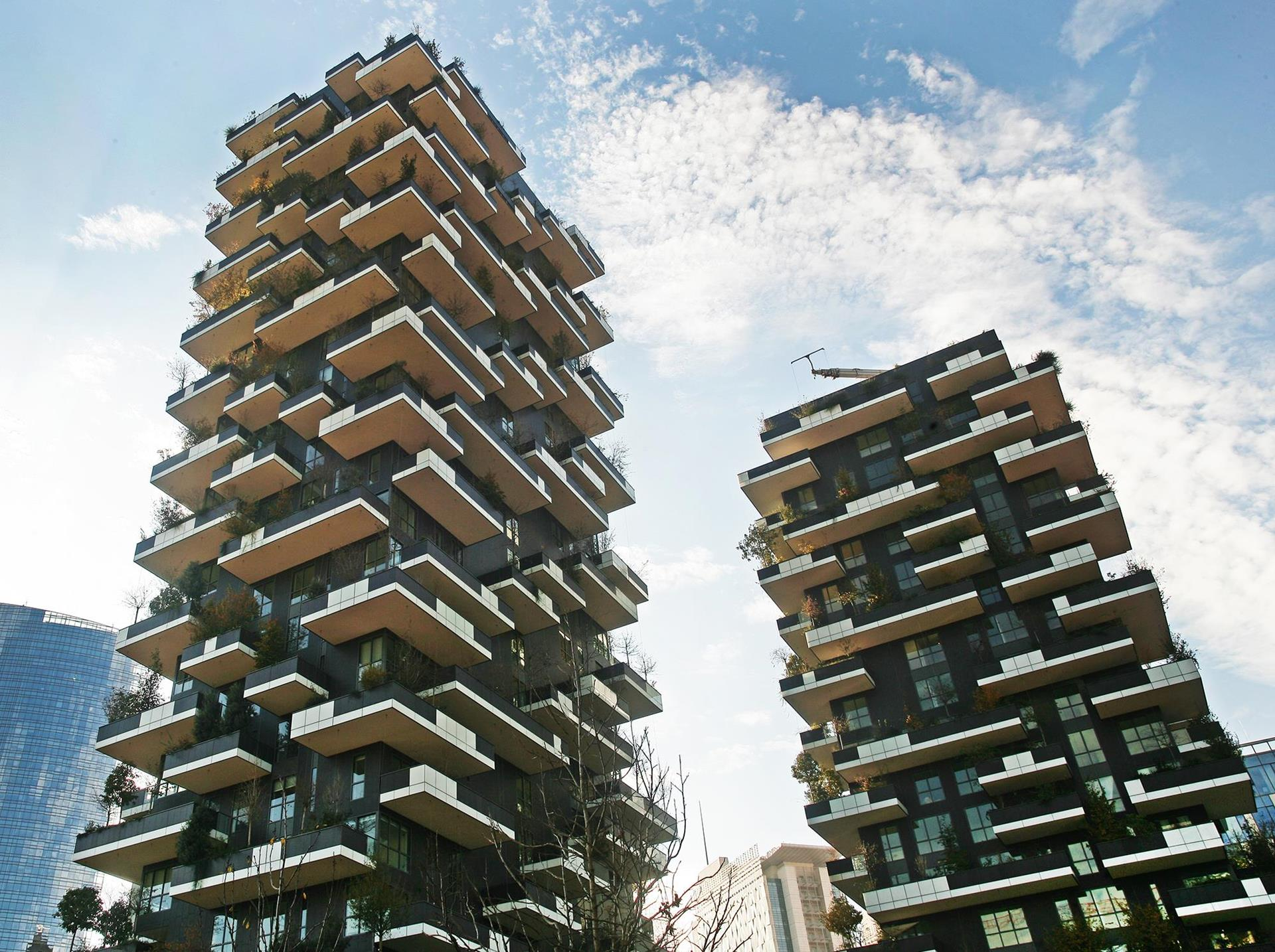 Bosco verticale: Photo 1